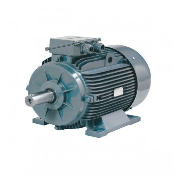 Monofaze Motor